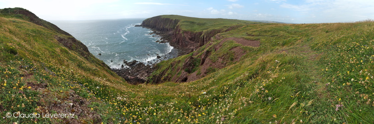 Caldey Island - Red Berry Bay