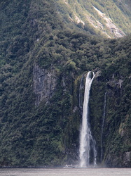 Wasserfall am Milford Sound