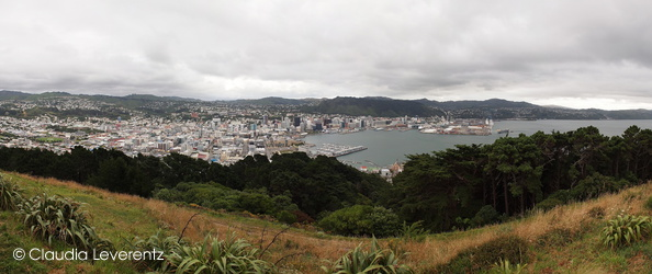 Panoramablick über Wellington
