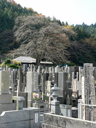 Friedhof in Nikko
