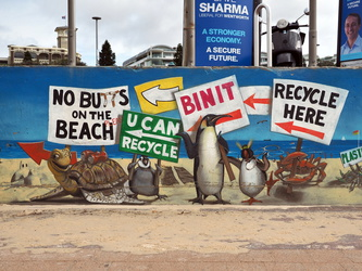Bondi Beach - Recycle
